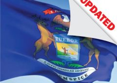 michigan-flag_updated-laws-and-rules-for-professional-engineers-course